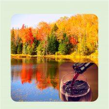 Fall Painting | Cabernet | Wine tasting