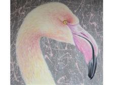 Flamingo Project